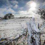 snow between bathuest and orange, July 2014